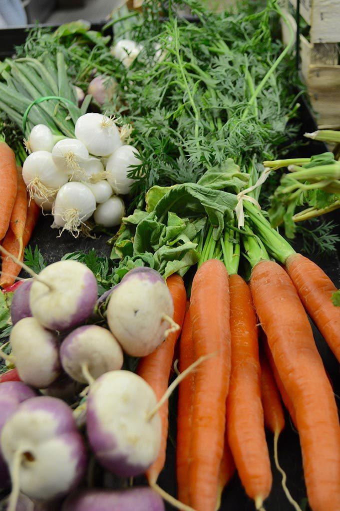 carottes navets oignons
